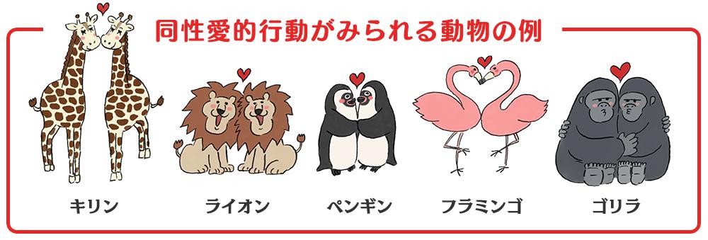 同性愛的行動がみられる動物の例